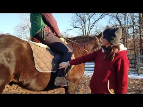 Using the leg and calf aids correctly. (how to kick your horse)