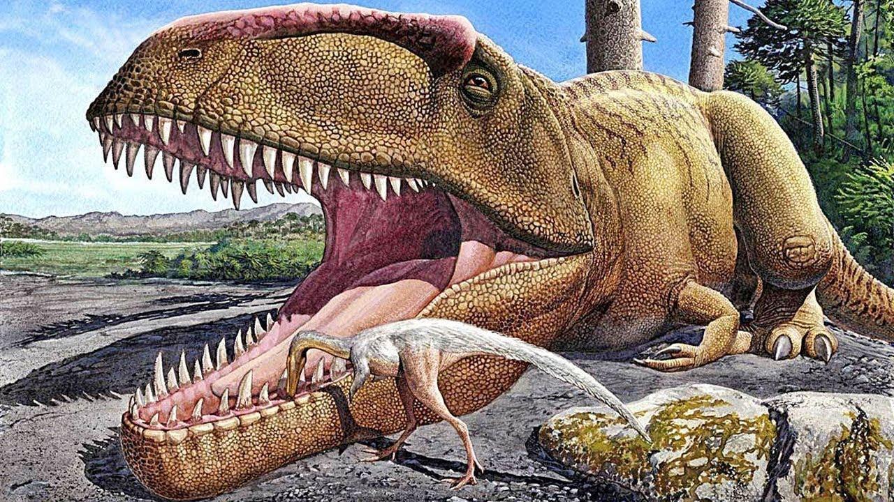 7 Animales Que Existian Antes Que Los Dinosaurios Youtube Normalmente, una especie se extingue dentro de los primeros 10 millones de años posteriores a su primera aparición, aunque algunas especies. 7 animales que existian antes que los dinosaurios