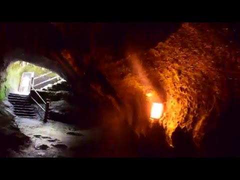 Thurston Lava Tube Located in Volcano National Park