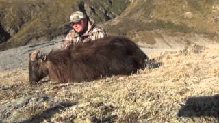 Red Stag Hunting New Zealand With Cabela's Outdoor Adventures