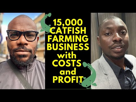 How To Start 15,000 Catfish Farming In Nigeria With Costs And Profit