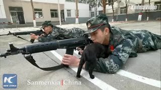 Soldier kissed by dog during shooting training in Henan, China