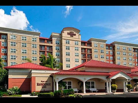 Tampa Stadium Hotel Hotels Florida