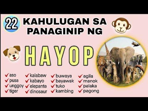 #34 KAHULUGAN SA PANAGINIP NG HAYOP / DREAMS AND MEANING OF ANIMALS (PART 1)