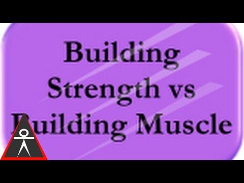 Building Muscle vs Building Strength