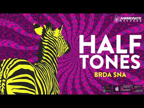 Halftones - Radio Kabul - (Official audio 2018)