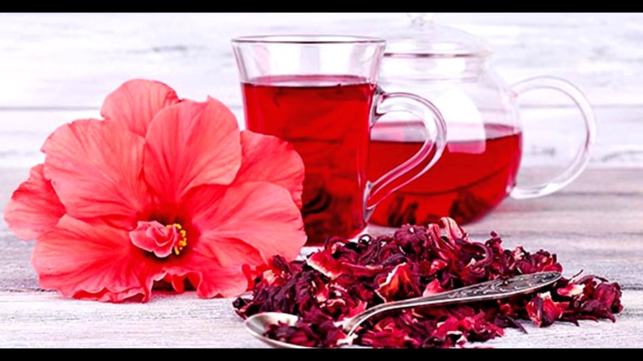 Чай каркаде - польза, свойства, как заваривать и ...