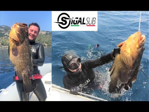 """THE GROUPER"" - SPEARFISHING ITALY - ENRICO CRETA - SIGALSUB TEAM - Pesca In Apnea Cernia 8 Kg"