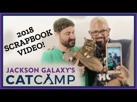 Jackson Galaxy's Cat Camp 2018 video scrapbook