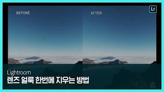 [라이트룸] 사진 여러 장에 있는 렌즈 얼룩 한번에 지우는 방법