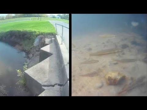 Underwater episode 23: Mendota IL (site18/location1)