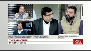 The Big Picture - PSUs Strateg…