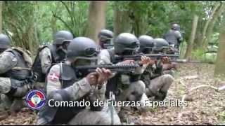 Video Institucional de la Fuerza Aérea Dominicana(Vídeo Institucional que muestra los componentes principales de la Gloriosa Fuerza Aérea Dominicana., 2013-05-25T05:29:50.000Z)