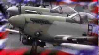 War Birds 2009 rc video
