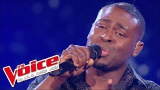 Jean-Jacques Goldman – Puisque tu pars | Wesley | The Voice France 2014 | Quarts de finale