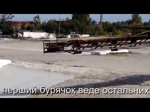 Шепетівка цукровий завод