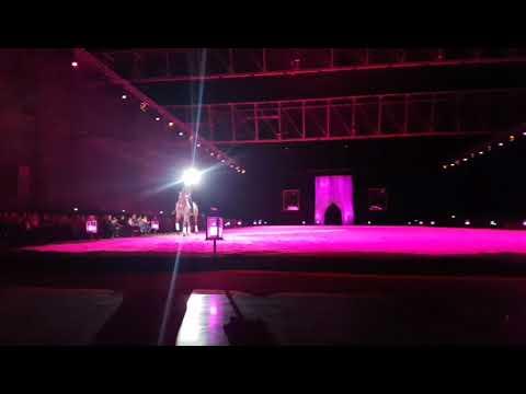 Cadre noir de Saumur à @gayant Expo Concert #Hall7000