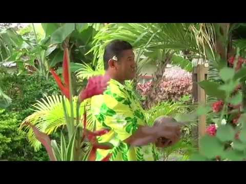 Makayla Palms, Rarotonga, Cook Islands: Umu Experience