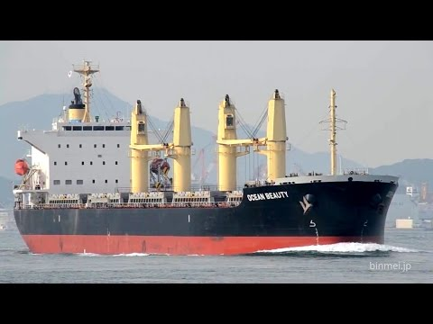 OCEAN BEAUTY - OCEAN LONGEVITY SHIPPING & MANAGEMENT bulk carrier