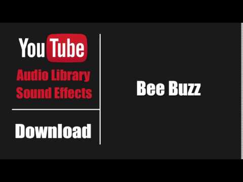 Free sound effect• bee buzz| free sound effects youtube.