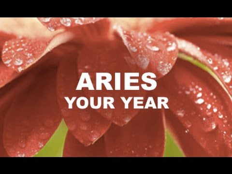 THE YEAR AHEAD - ARIES - March 21 2017 - 2018