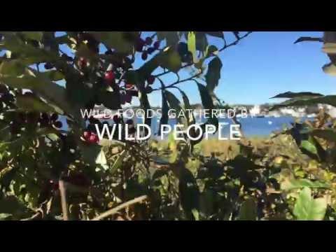 The Farm Project won MV  Local Wild Food Challenge!