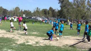 Resumen final: Real Celaya Vs. Osos del Campestre