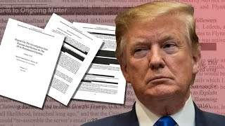 Democrats Read The FULL (Redacted)Mueller Report!