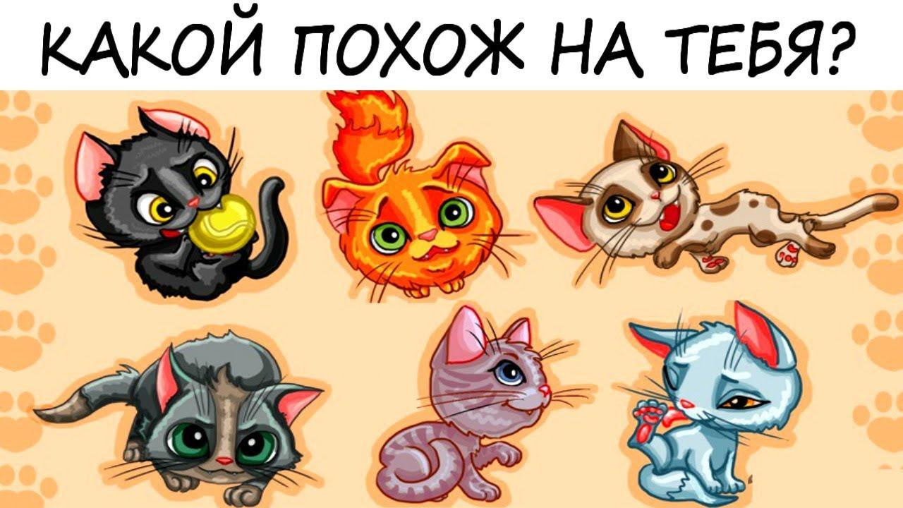 Тесты с картинками кошка