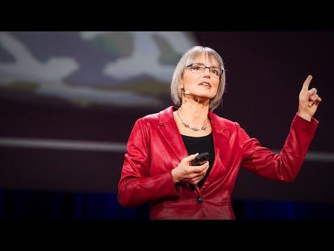 Nancy Kanwisher: A neural portrait of the...