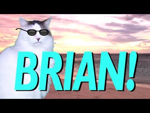 HAPPY BIRTHDAY BRIAN! - EPIC CAT Happy Birthday Song