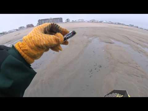 Hampton Beach NH Metal Detecting,  White's Surf PI Dual Field
