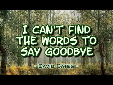 I Can't Find The Words to Say Goodbye - David Gates (KARAOKE)