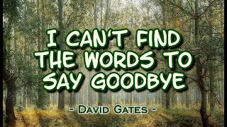 I Can't Find The Words to Say Goodbye - David Gates (KARAOKE VERSION)