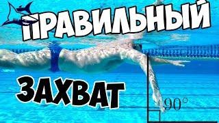 Как правильно плавать кролем?  Плавание
