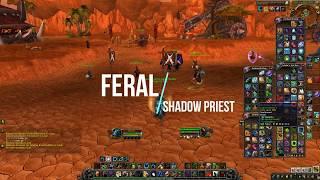 Wow   BFA Feral Druid duels (Pre patch)