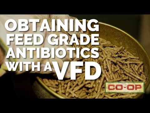 Co-op Minute: Veterinary Feed Directive