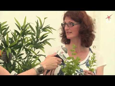 Rose Festival 2017: Irish Register of Herbalists