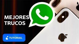 Si tienes WhatsApp, DEBES VER este video