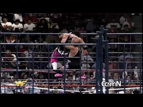 Bret Hart vs Owen Hart Highlights HD - SummerSlam 1994