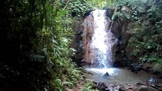 Cachoeira Jardim Alegre - PR.AVI