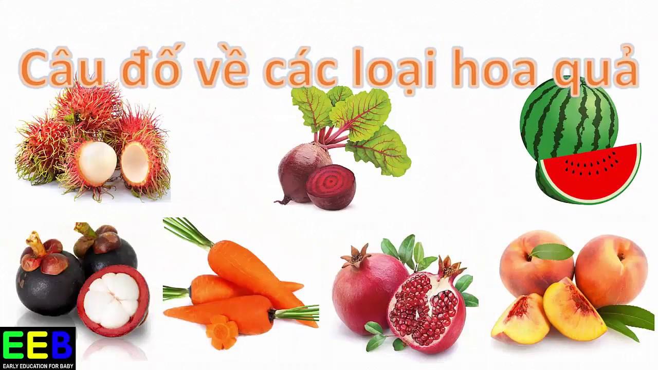 Câu đố cho bé| Đố bé quả gì| Dạy bé các hoa quả tiếng Việt| Giáo dục sớm cho trẻ EEB