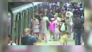 E merr treni me vete, shpëton mrekullisht - Top Channel Albania - News - Lajme