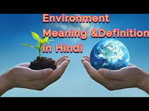 What Is Environment? पर्यावरण||  Meaning Of Environment In Hindi By Lokendra Mishra