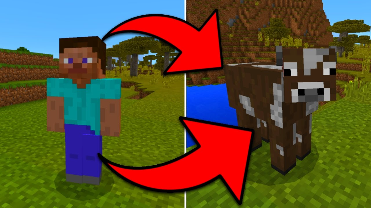 How To Turn Into Any Mob In Minecraft Pocket Edition