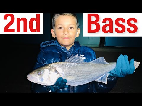 First Ever Bass From UK Beach Fishing At Frinton On Sea