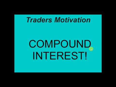 Forex compound gains calculator