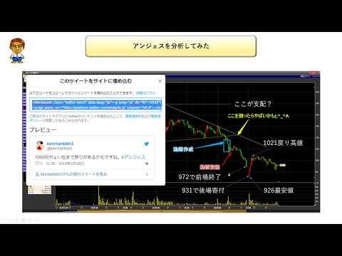 【株式投資】【緊急特番!】アンジェスを分析してみた【結果報告】
