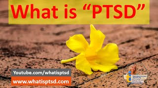 What is PTSD? Learn to Survive and Thrive after Trauma