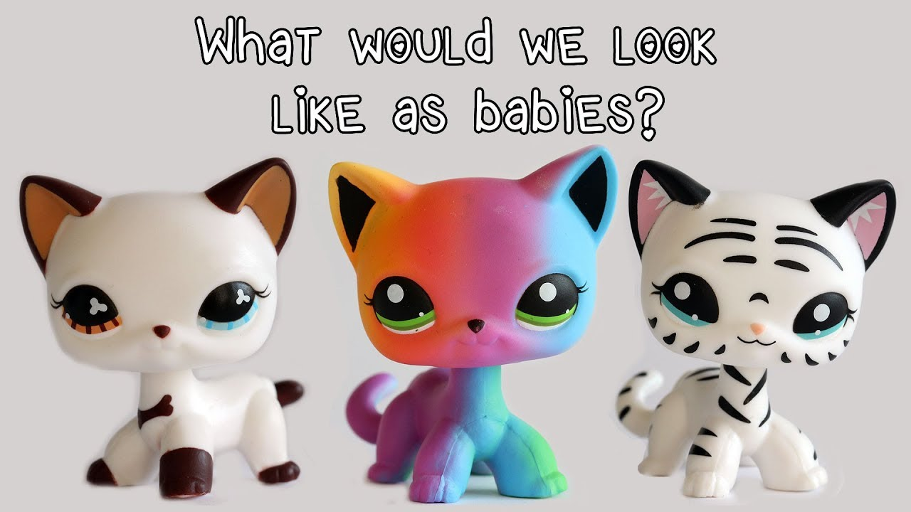 What Would We Look Like As Babies Fake Lps Shorthair Cats Edition